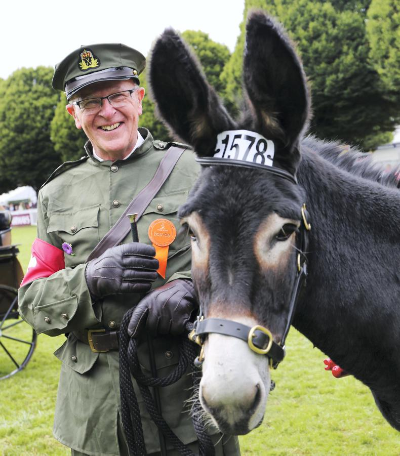 DUBLIN HORSE SHOW 2018:  Huge interest in WWI donkey display