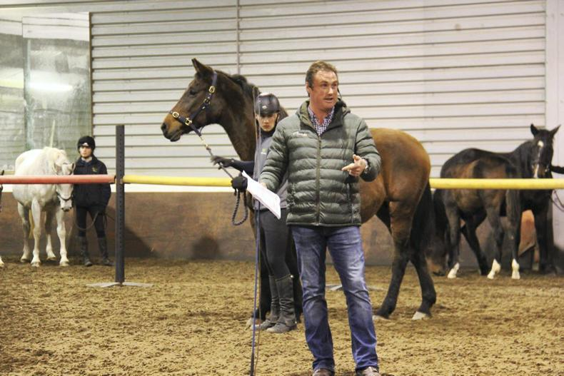 HORSE SENSE: Top speakers lined up for breeders forum