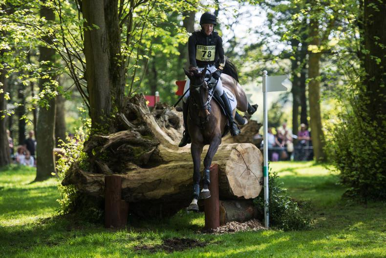 PONY TALES: O'Haire eager to pick up the reins