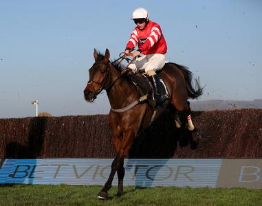 VIDEO: Gold Cup hero Coneygree retired after Ascot run