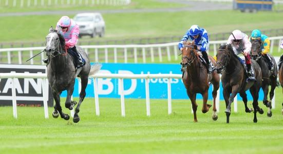 BREEZE-UP: 91% clearance rate as Williamsons provide €175,000 sale-topper