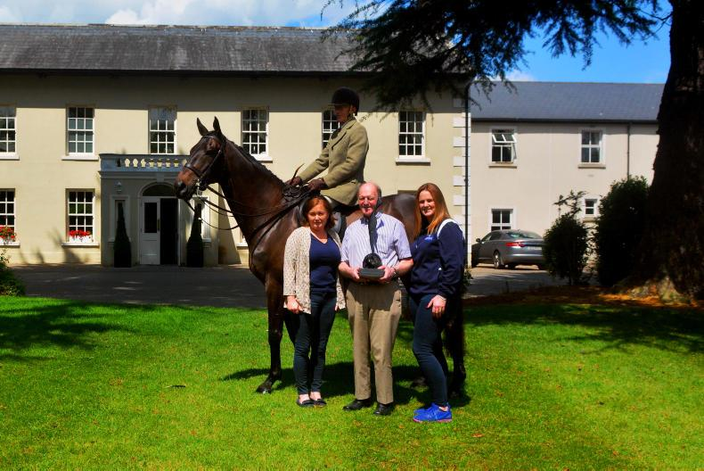 PONY TALES:  Great equine action at Flavours of Fingal