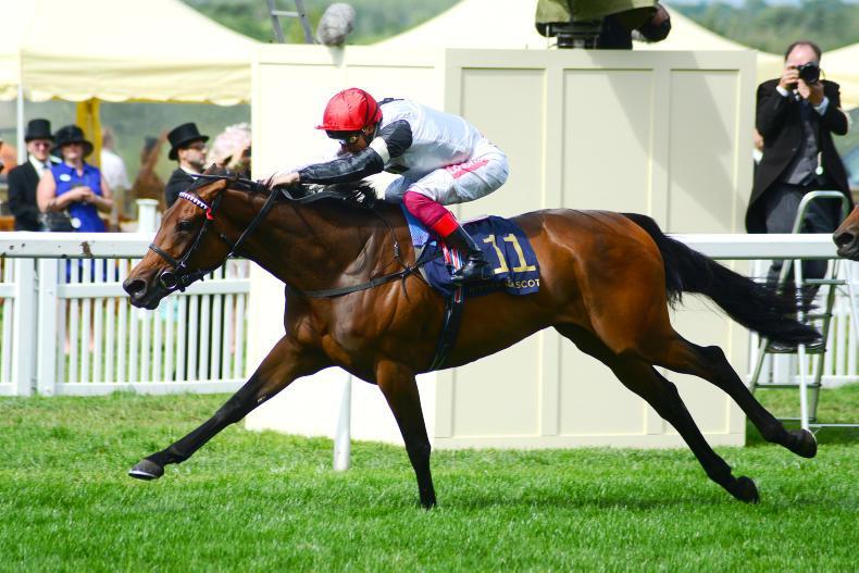 BREEDING INSIGHTS: Landmark wins for two Irish stallions