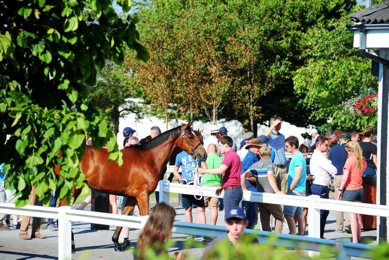 NEWS IN BRIEF: Racing and breeding stories from the June 22nd edition