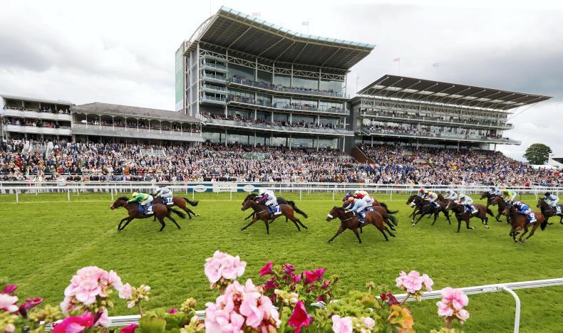 MONDAY OUTLOOK: Five Irish horses to follow at York