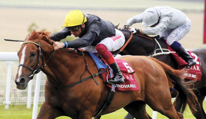 NEWS: Stradivarius to face four in bid for Lonsdale double