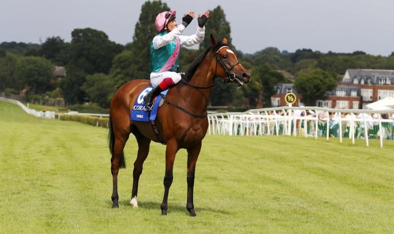 VIDEO: Search For A Song wins for Weld at York