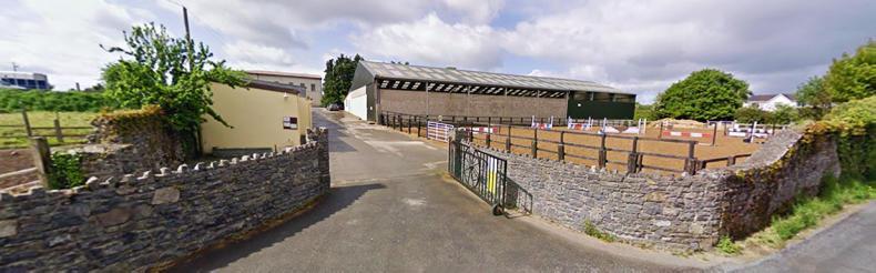 HORSE SENSE: Great opportunities await at Grennan College