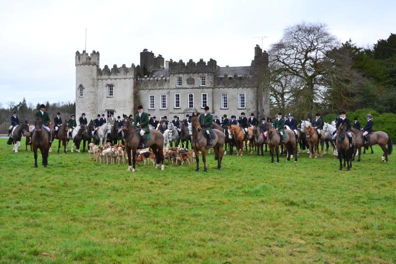 Horse Sense Hunting Feature 2019