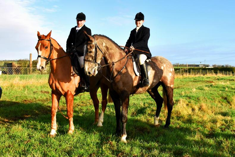 PONY TALES:  All aboard for Culmullen Chase