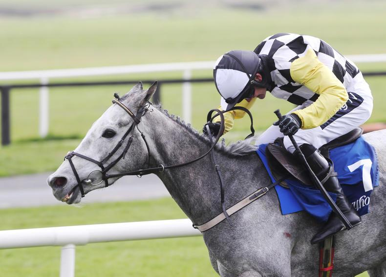 RORY DELARGY: A Cesarewitch for dreamers only