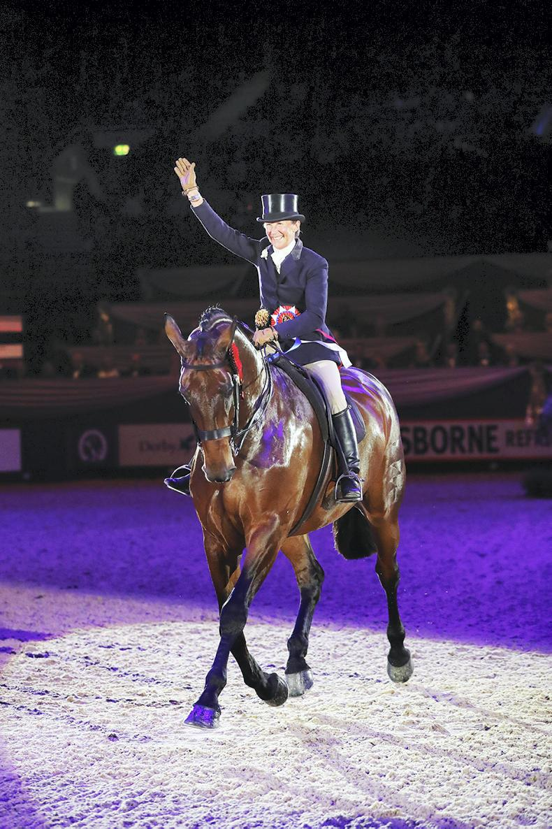HOYS 2019: Twinshock Warrior (ISH) crowned HOYS supreme