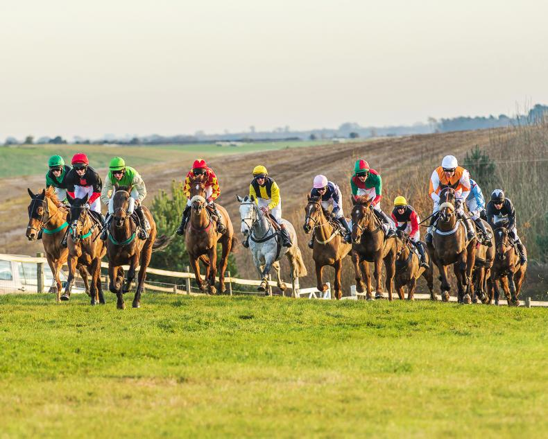 BRITISH POINT-TO-POINT: Ellis kicks off season in Cottenham