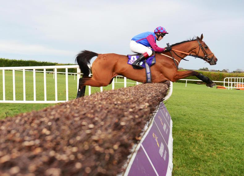 Honeysuckle heads Irish Champion Hurdle entries