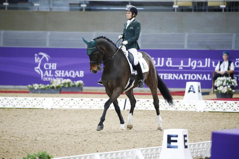 NEWS:  Sponsorship boost for Ireland's Olympic eventers