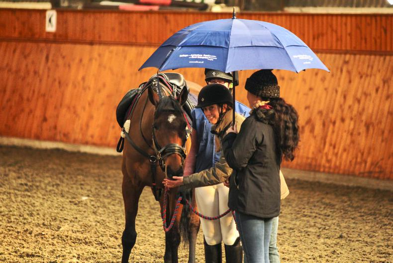HORSE SENSE: Examining equine behaviour and body language with Dr Helen Spence