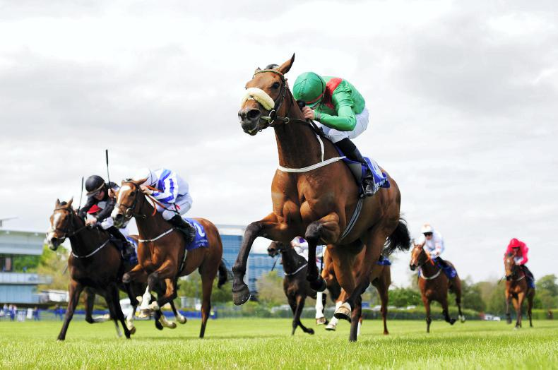 Breeders free to take mares to stallion farms under restrictions