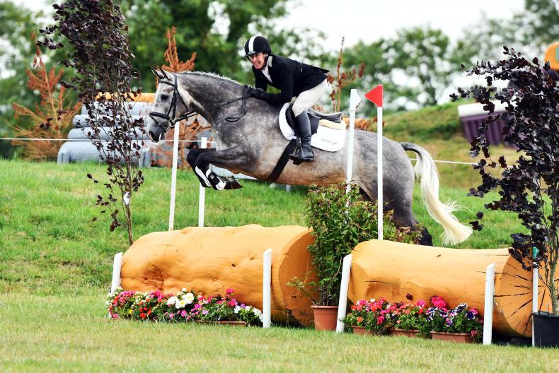 FEATURE: John Bannon - Selling horses and houses