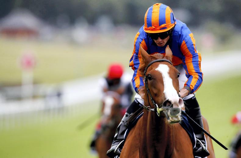 INVESTEC DERBY: Serpentine goes it alone for famous win