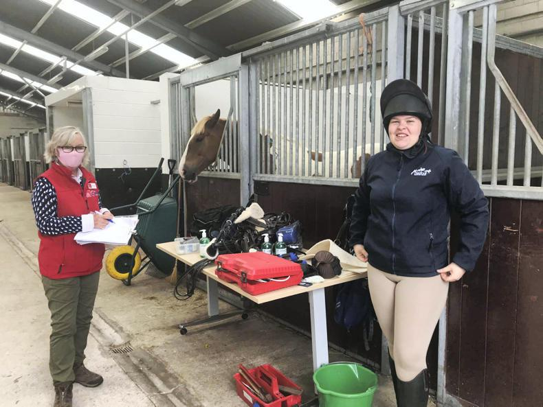HORSE SENSE: Experience in all aspects of the equine industry at CAFRE