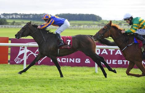 VIDEO: Curragh success for Elysium and A Step Too Far