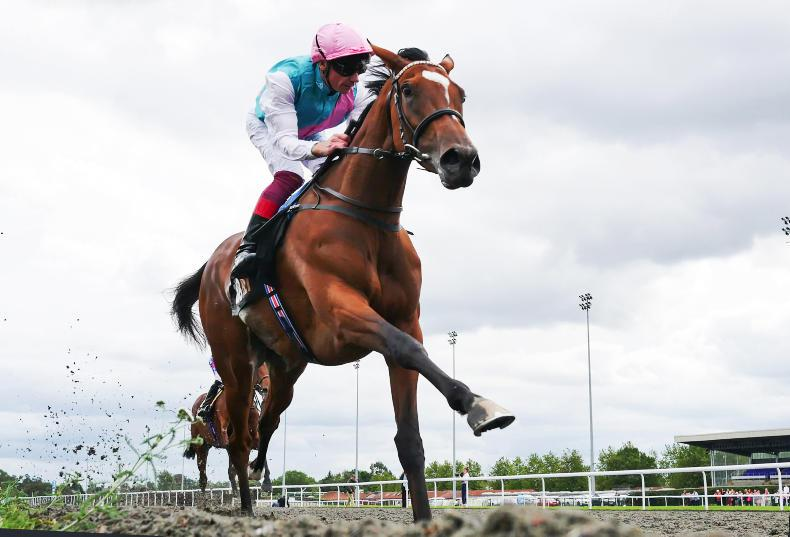 FRANCE: Enable going for third Arc win