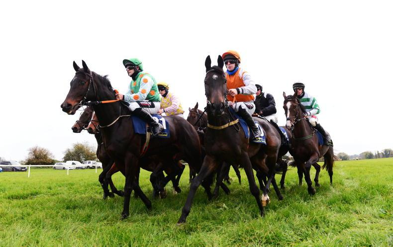 EOGHÁIN WARD: Cullentra House Stable Staff Syndicate looking for points success