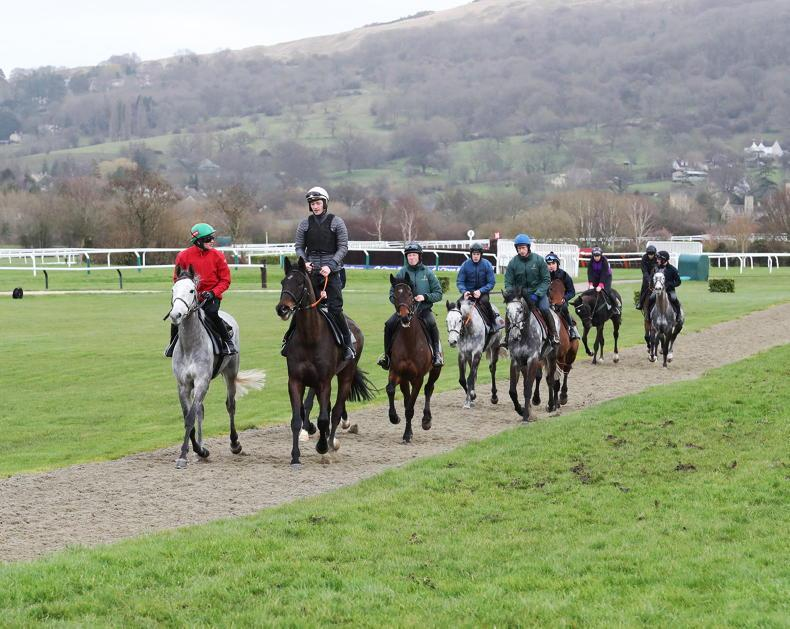 NEWS: Amateur riders staying at home