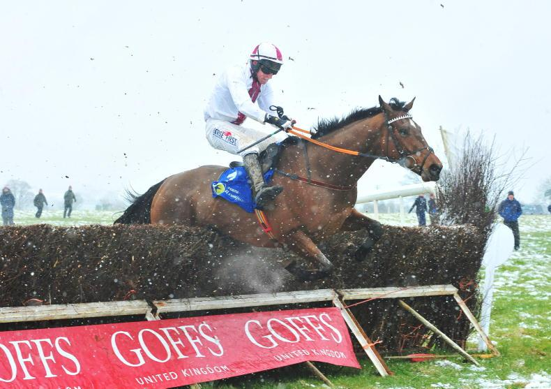 CHELTENHAM REVIEW: Hoping Gold Cup sucess will boost point-to-point campaign
