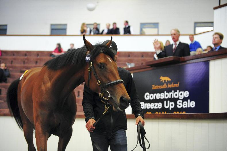 NEWS IN BRIEF: Racing and bloodstock stories from the April 10th edition