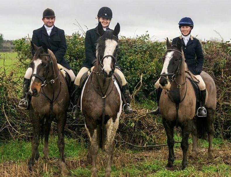 HORSE SENSE: No two days the same at Kildalton College