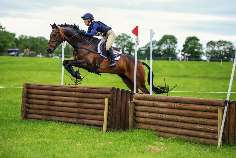 PONY TALES: Getting the hounds out