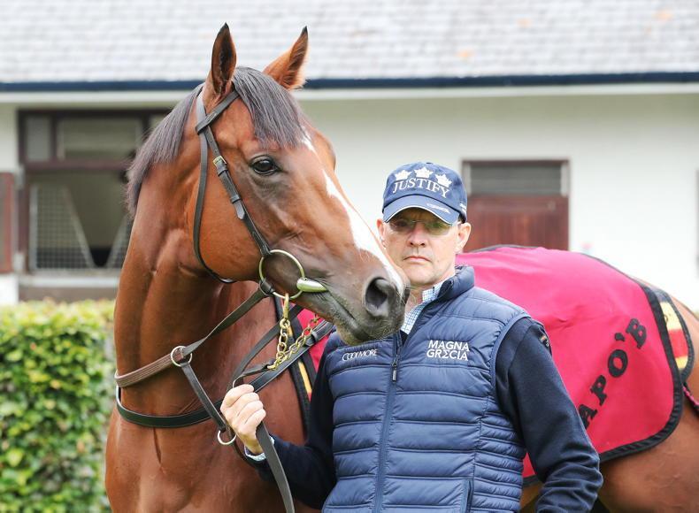 NEWS: Over 70 winners of €5,000 NH fillies' bonus this year