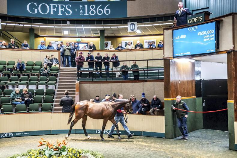 NEWS: Orby Sale looking to get back on upward curve
