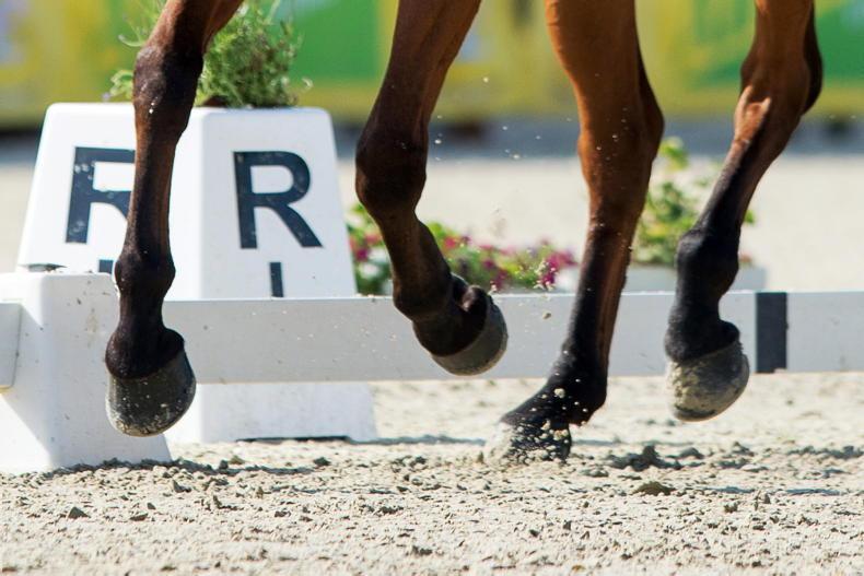 IRISH HORSE WORLD FIXTURES: OCTOBER 16th 2021