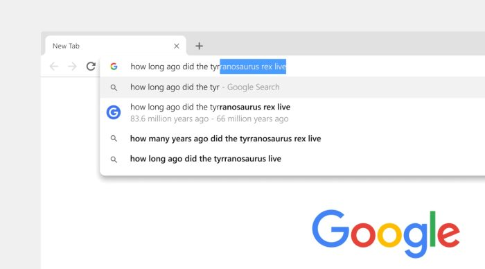 1397697658_GoogleChrome69addressbar.jpg