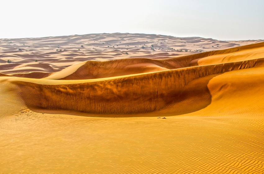 Dubai Holidays- Desert Adventures