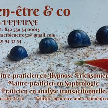 Yann Lejeune , Hypnose à Joinville, France