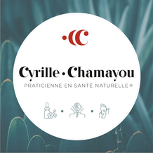 Cyrille Chamayou , Naturopathie à Aussonne, France
