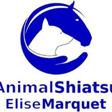 Elise Marquet , Shiatsu à Angouleme, France