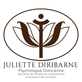 Juliette Diribarne , Psychanalyse à Ozoir La Ferrière, France