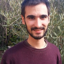 Loïc Régaré , Naturopathie à Castanet Tolosan, France