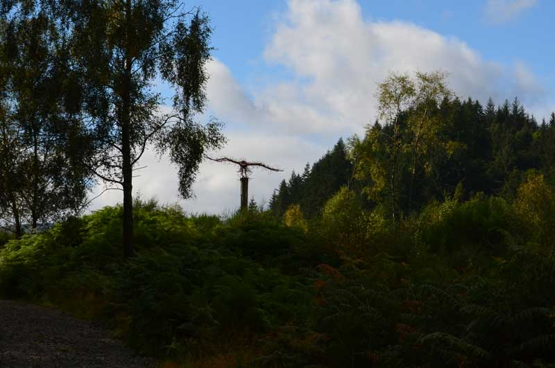 Eagle Sculpture Lochan Spling Ard Forest