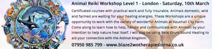Animal Reiki Workshop Level 1