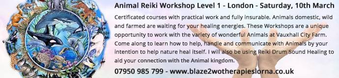 Animal Reiki Workshop Level 1