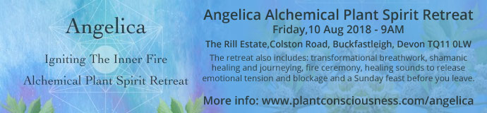 Angelica Alchemical Plant Spirit Retreat