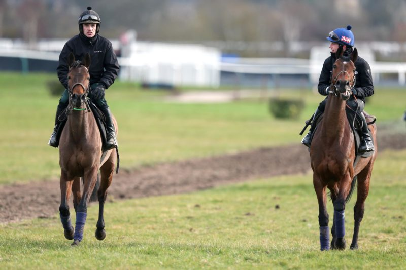 Ruby Walsh on Quevega and Paul Townend on Hurricane Fly on the gallops in Cheltenham in 2013 ©INPHO/Dan Sheridan