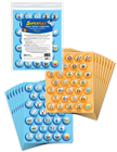 Self-Regulation with Superflex! Get Started Bundle