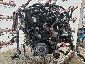 View Auto part Engine NISSAN NAVARA 2016