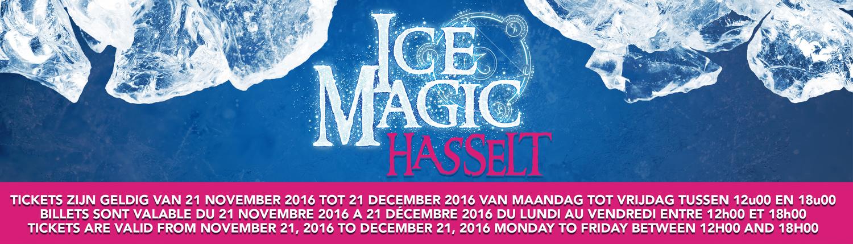 Sculpturen Festival - ICE MAGIC HASSELT